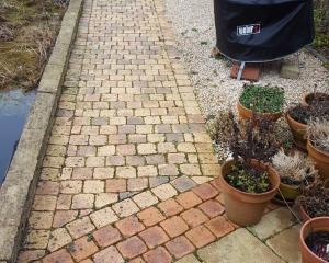 Reiniging tuinpad